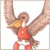 Pelican Notecards