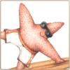 Sea Star Art Print
